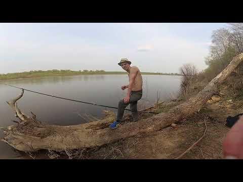 Рыбалка под каширой на оке