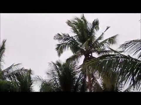 A Tropical Depression In Northern Bohol Very Mild Philippines Expat Foreigner