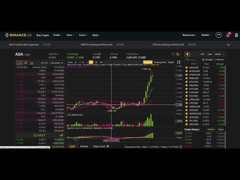 Crypto Market Update 11/25/20