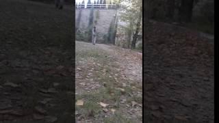 BARTIN ÜNİVERSİTESİ/PETANQUE SHOOT KARO MİRKASIM YILDIRIM