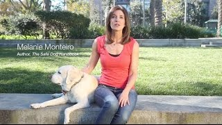 New Online Certificate Course! Dog Cpr, First Aid & Safety Training With Melanie Monteiro
