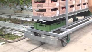 オランダ 農業 施設園芸 トマト 収穫台 自動輸送