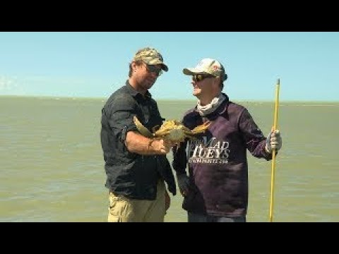 IFISH Barra & Mud Crabs with Matt Wright - Full Episode