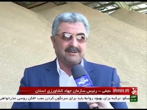 Iran Hirmand county, Mechanized Wheat harvest برداشت مكانيزه گندم شهرستان هيرمند ايران