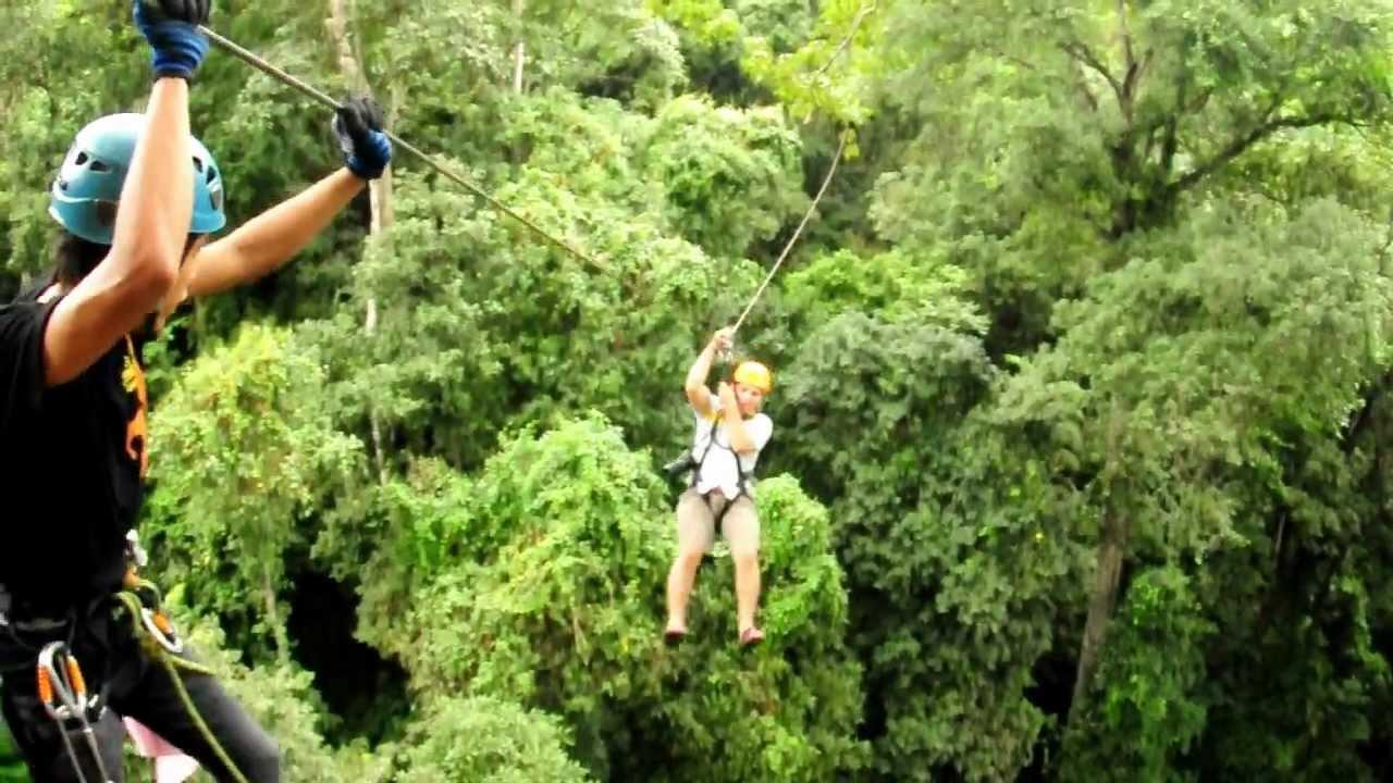 Lemuels-Flight of the Gibbon - YouTube
