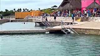 Port of Costa Maya, Mexico -   Caribbean Cruise Vacation -  YouTube