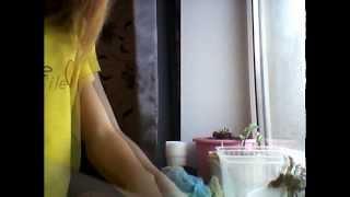 Цветы:Посадка семян цветов дома. Мыльнянька базиликолистная, Портулак мохровый розовый(Здесь я расскажу о посеве, уходе и цветении цветов) Мыльнянка Базиликолистная Низкорослый, ковровый,быстр..., 2014-03-02T03:35:07.000Z)