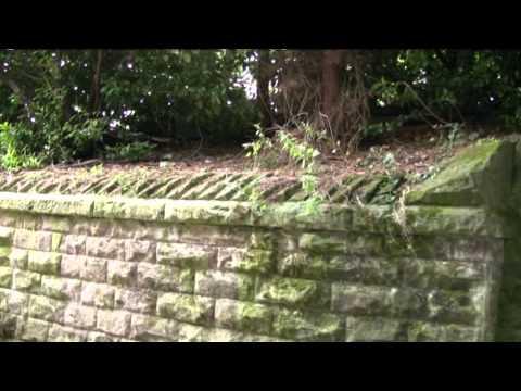 A Railway Walk, Rowsley to Haddon
