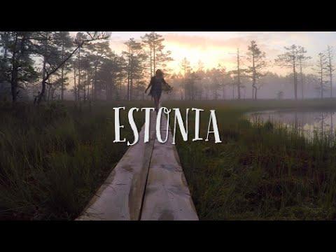MAGICAL MARSH // Estonia