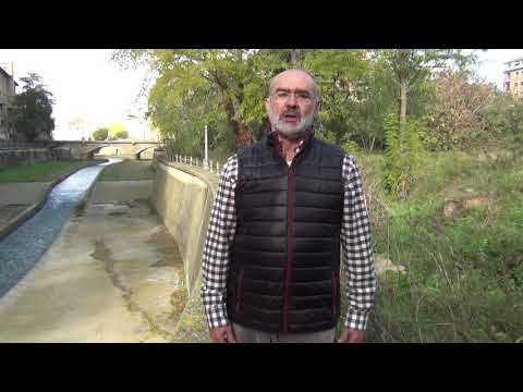El Ayuntamiento convertirá el Paseo de los Enamorados en un Parque Fluvial, a propuesta de Cambiar