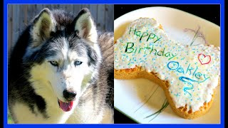 HAPPY BIRTHDAY OAKLEY THE HUSKY
