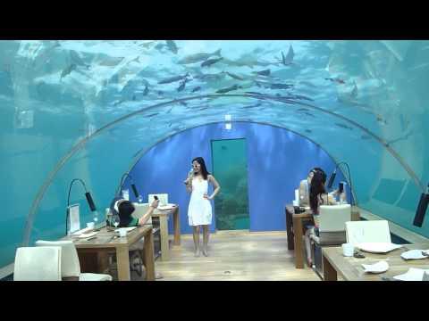 Maldives   Ringali Island Conrad   Underwater Restaurant Part 3