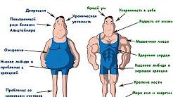 Тестостерон и потенция 7 фактов о которых должен знать каждый мужчина