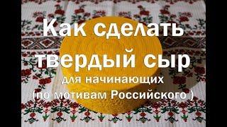Твердый сыр по аналогу Российского  Рецепт для начинающих  Hard cheese by analogy of Russian .