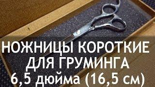 Ножницы для груминга прямые короткие 6,5 дюйма (16.5 см) CY-32(http://thezoo.ru/ Ножницы для стрижки шерсти собак, кошек прямые короткие 6,5 дюйма (16.5 см) CY-32 Недорогие и качественн..., 2013-11-27T20:45:29.000Z)