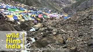 Amarnath yatra: Pilgrimage in search of salvation but causing immense pollution thumbnail