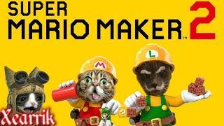 Super Mario Maker 2 | Minimal Rage