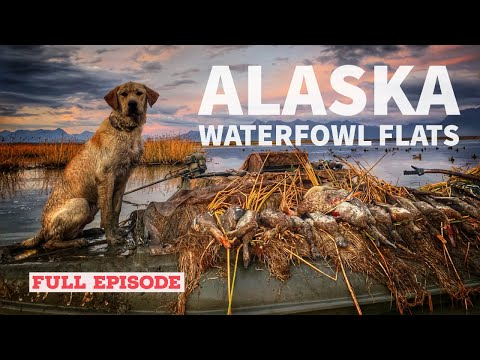 Alaska Waterfowl Flats