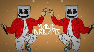 Marshmello ft. Bastille - Happier (DirtySnatcha Remix) + Promotion Danger Nation