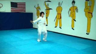 Master Shi Yan Feng Tai chi form