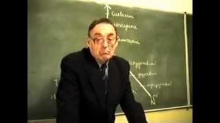 Теория урока и его педагогический анализ. Часть VIII