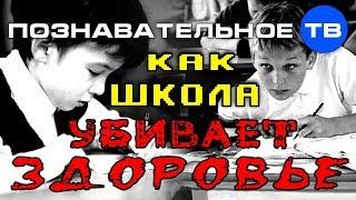 Как школа убивает здоровье (Познавательное ТВ, Илья Михнюк)