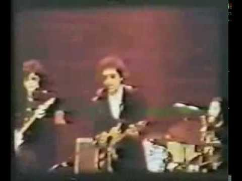 Bob Dylan - Live 1974 at St Louis (audience film)