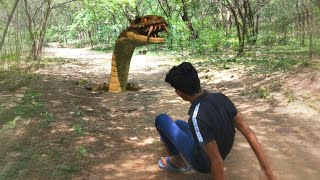 Anaconda Snake in Real Life | Edit with Mobile