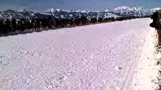 Jackson hole cutter races run away
