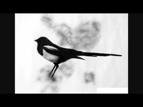 Digital Classics - The Theiving Magpie, Rossini