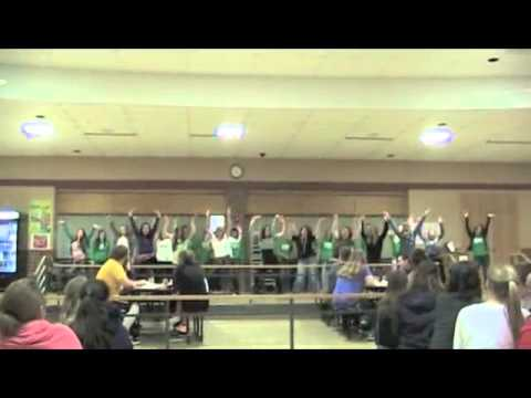 RVC Flash Mob by Brodhead High School