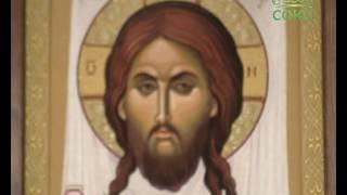 Уроки православия. Учение о человеке. Ключевые темы церковной догматики. Урок 19. 27 июля 2016г