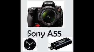 Live Stream com Sony Alpha A55