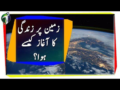 Origin of Life on Earth Urdu  Hindi