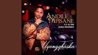 Uyangqhaska (feat. DJ Tira, Dladla Mshunqisi, Stix Manyanyisa)