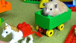 Tiny Hamster in Lego Park