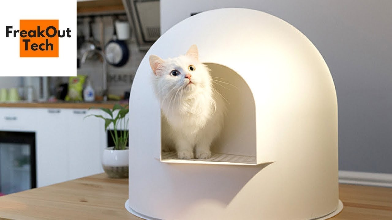 5 Incredible Inventions For Your Cat 1 Youtube