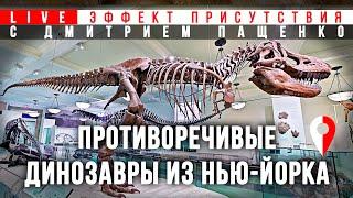 Противоречивые динозавры: Музей естественной истории (Нью-Йорк). #Эффект присутствия с Д. Пащенко