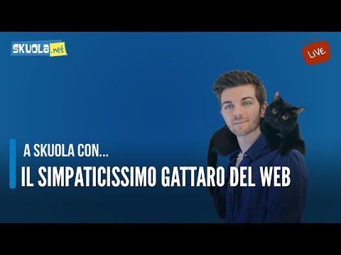 Il Gattaro del web ospite della vidochat!