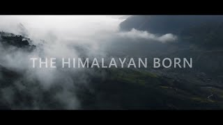 Why do we TRAVEL? | The Himalayan Born - Channel Trailer