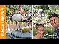 World´s Biggest Aviary at the Kuala Lumpur Bird Park! Taman Burung