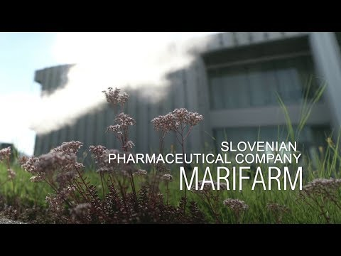 Promotional video for