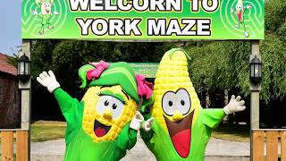 York Maze | The Corniest Attraction In The Uk!!! 🌽🌽🌽