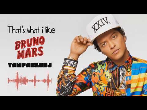 Yan Pablo DJ feat Bruno Mars - Thats what i like FUNK REMIX