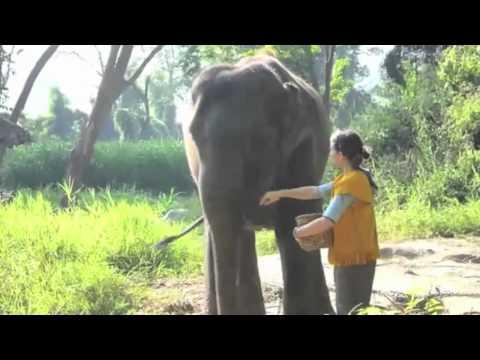 Tourism Project Nature Park