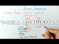 Mechanism of T-CELL ACTIVATION