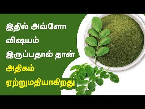 Moringa Leaves Powder   Drumstick Leaves Benefits   Murungai Ilai
