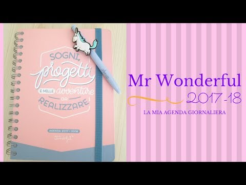 ✨Nuova agenda Mr Wonderful 2017/18 ✨Unboxing e prime impressioni