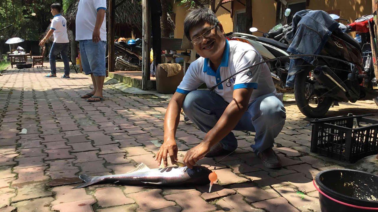 Phóng sự Phóng sự hồ câu cá Ao Đôi – ĐỨC HOÀ – LONG AN- thegioicauca.com