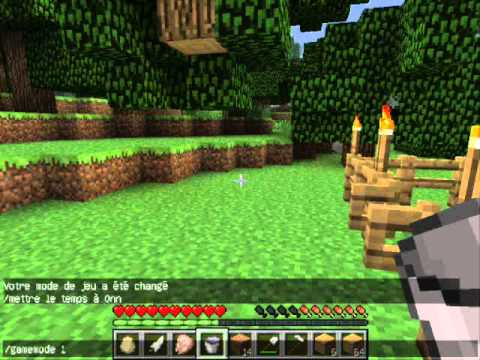 Minecraft FR] Comment faire un champs. Pour débutant - YouTube